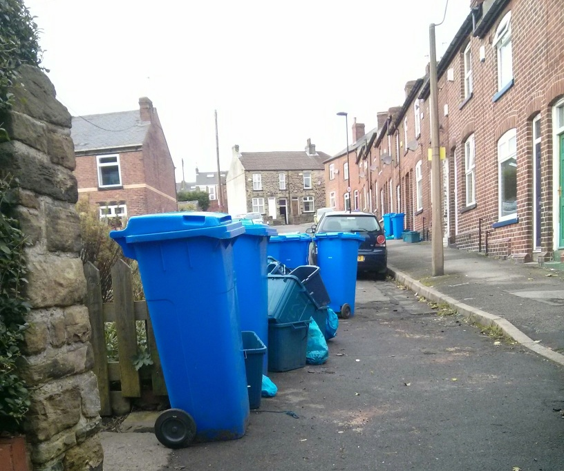 Blue bins