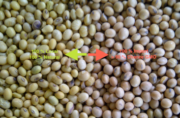 soybean_local_vs_import1