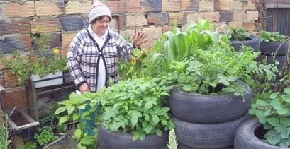 agriculturaurbana