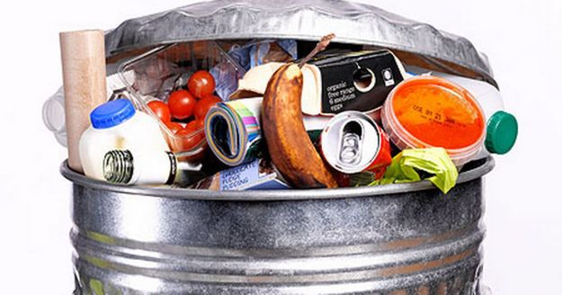 food-waste-pic-getty-images-245448043