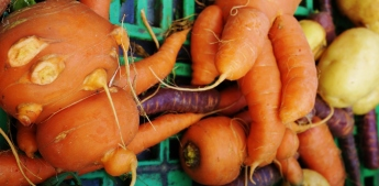 Wonky veg that will not make it to the plate