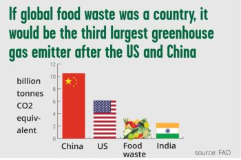 if_food_waste_was_a_country-768x509