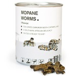 mopane-worms