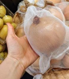 Gigantic Organic Onion