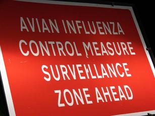 avianinfluenza