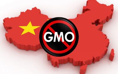 中国没有GMO