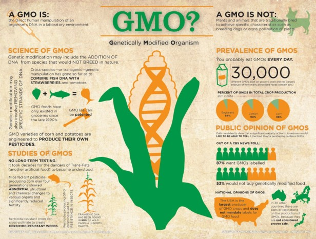 GMO定义图片