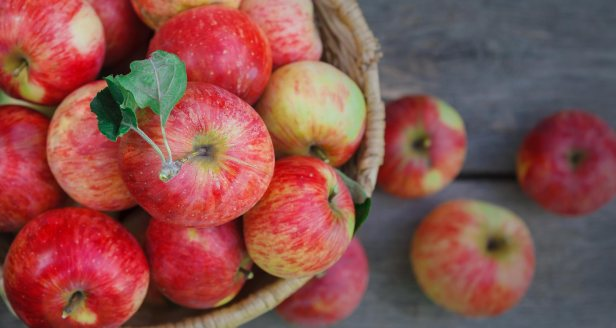 blog-featured-healing_apples-2018011-1400
