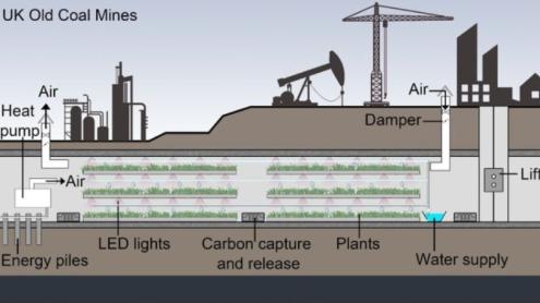 coal farming